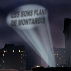 Logo bonsplansmont.jpg